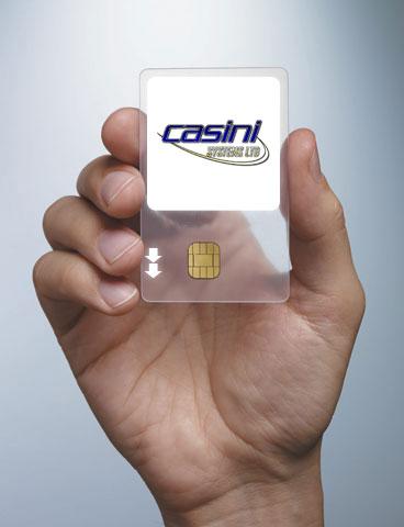 Who are Casini Systems?